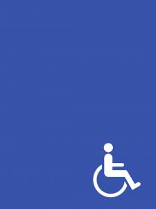 cazare camera persoane cu dizabilitati/handicap Gura Humorului Bucovina Voronet